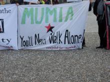 Free Mumia - Free Them ALL!